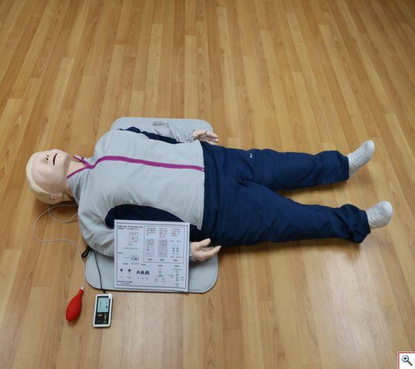 CPR全身安妮